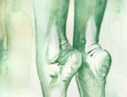 Dalle radici alla corteccia – I nostri piedi 27 02 20