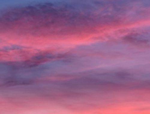 serata meditazione 04 02 2021